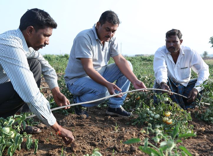 Empowering Regional Prosperity Through a Multi-Stakeholder Agro-Water Management Project